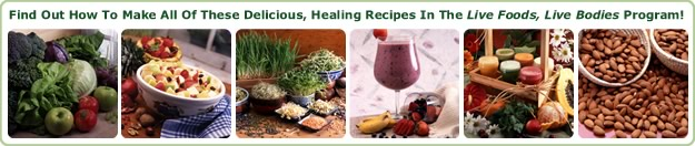 Food And Juicing Recipes from the Live Foods Live Bodies book